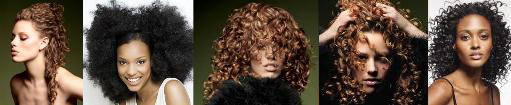 curlybanner